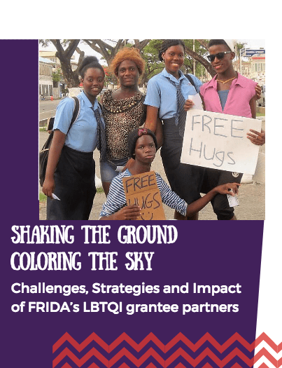 FRIDA Impact Report Cover